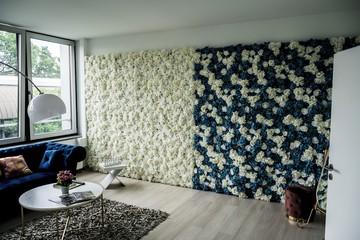 Hamburg  Fotostudio Maystudio by Dynamic Media image 2